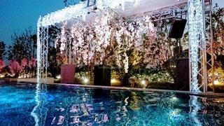 花,桜,水面,噴水,ナイトプール