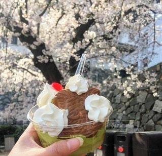 食べ物,自然,風景,桜,デザート,アイスクリーム,パフェ,日中