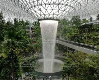 水,滝,樹木,シンガポール,噴水,植物園,草木