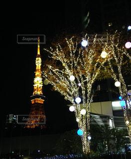 東京タワー彩りの写真・画像素材[3261497]