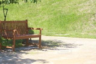 公園,屋外,ベンチ,草,椅子,家具,地面,木目,草木