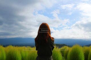 夏と秋の狭間に。の写真・画像素材[2570553]