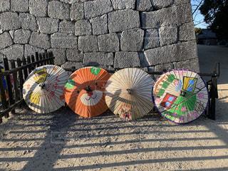 風景,傘,屋外,鮮やか,旅行,和傘,石,天守閣,カラー,石垣,松山城,みきゃん