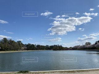 自然,風景,空,湖,綺麗,日中
