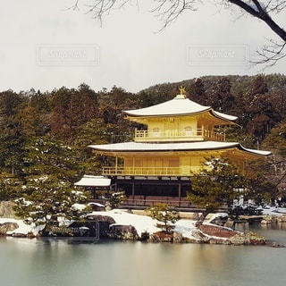 自然,京都,池,寺