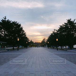 風景,空,夕焼け,東京駅,樹木,丸の内