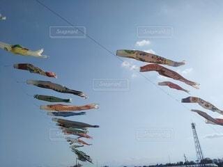 空に凧を飛ばす人々のグループの写真・画像素材[3219188]