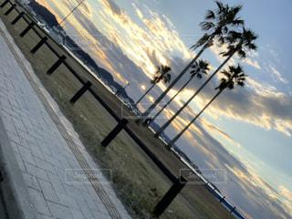 自然,風景,海,空,屋外,太陽,ビーチ,船,海岸,樹木,眺め,クラウド