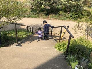 公園,屋外,手繋ぎ,仲良し,幼児,少年,兄弟,遊び場,草木