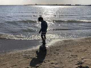 自然,風景,海,空,屋外,ビーチ,波打ち際,波,貝殻,海岸,葛西臨海公園