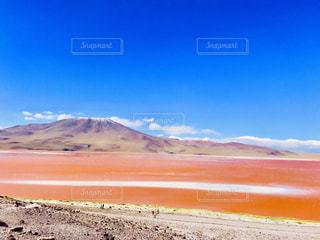 自然,風景,空,屋外,ピンク,山,ボリビア,高地,プランクトン,赤い湖,海抜4270m,ラグナ・コロラダ,エドゥアルド・アバロア国立自然保護区,ホウ砂