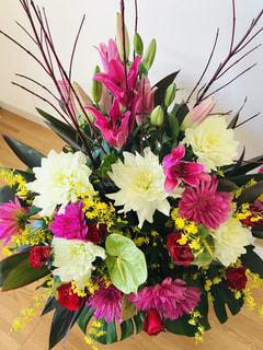 花のクローズアップの写真・画像素材[3224697]