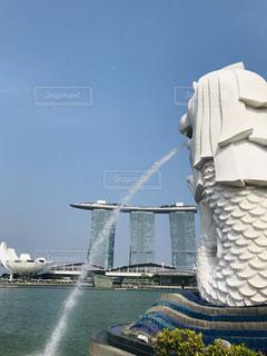 シンガポール  マーライオンパークの写真・画像素材[3225973]
