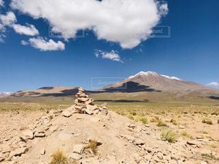 山を背景にした砂漠の畑のクローズアップの写真・画像素材[3245694]
