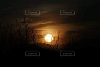 夕日の写真・画像素材[3217683]