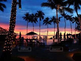 自然,空,夜,海外,ビーチ,夕暮れ,ヤシの木,パラオ,パーム