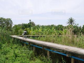 自転車,海外,大自然,旅行,サイクリング