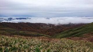 自然,風景,屋外,山,高原