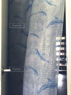イルカのドアカーテンの写真・画像素材[3314797]