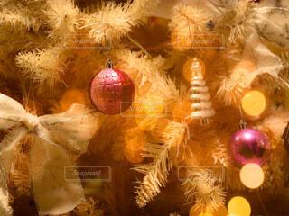クリスマスツリーの写真・画像素材[3982464]
