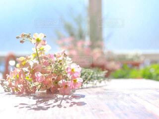 ピンクの花束の写真・画像素材[4176654]