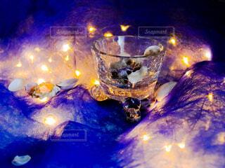 貝殻と光の写真・画像素材[4463581]