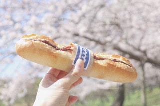 春,朝食,景色,パン,お花見,ピクニック,breakfast,一眼レフ,パン屋さん,Spring,picnic,bakery,ブラフベーカリー,bluffbakery