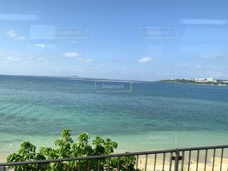 自然,海,夏,緑,植物,白,雲,綺麗,青,砂浜,沖縄,美しい,フェンス,柵,初夏,思い出,素敵,広大