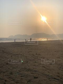 犬,自然,海,空,夕日,夜景,絶景,屋外,太陽,砂,ビーチ,綺麗,夕暮れ,波,散歩,曇り,水面,海岸,湘南,由比ヶ浜