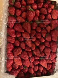 イチゴのクローズアップの写真・画像素材[3220721]