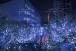 建物,冬,夜,夜景,屋外,東京,綺麗,青,車,幻想的,道路,電球,タワー,美しい,イルミネーション,都会,癒し,クリスマス,感動,マンション