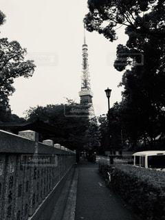 風景,東京タワー,屋外,東京,モノクロ,タワー,黒と白