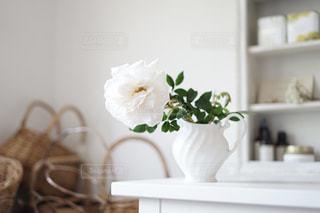 薔薇の季節、花のある暮らしの写真・画像素材[3229291]