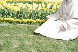 芝生で覆われた畑の上に座っている人の写真・画像素材[4319861]
