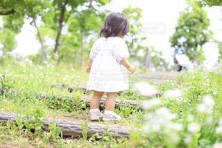 自然,風景,公園,春,屋外,緑,階段,後ろ姿,子供,女の子,背景,人物