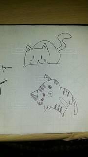猫,動物,にゃんこ,イラスト,アート,ねこ,ペン,お絵描き,手書き,紙,おえかき,スケッチ,おうち時間