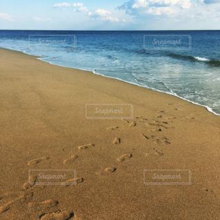 自然,風景,海,空,屋外,ビーチ,砂浜,水面,海岸,水平線,足跡