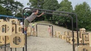公園,キッズ,屋外,人物,人,運動,男の子,園児,わんぱく,小児,うんてい,お猿さん,パーソン