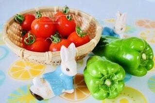 食べ物の皿の写真・画像素材[3666213]