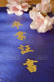 卒業証書と花の写真・画像素材[4234555]