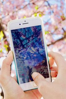 携帯電話を持つ手の写真・画像素材[4271413]