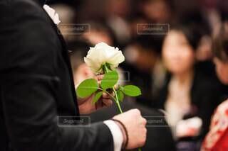 花,群衆,屋内,白,バラ,結婚式,手持ち,人物,人,ポートレート,ローズ,披露宴,セレモニー,ライフスタイル,手元,参列,ダズンローズ