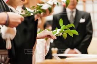 食べ物,花,屋内,結婚式,手持ち,人物,人,結婚,料理,観葉植物,ポートレート,ライフスタイル,白無垢,和装,手元,神前式,玉串,結婚式ドレス