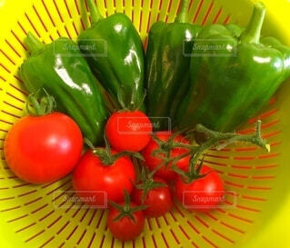 食べ物,屋内,緑,赤,黄色,果物,トマト,野菜,食品,ピーマン,食材,フレッシュ,ベジタブル,黄緑,配置