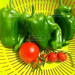 食べ物,風景,屋内,緑,赤,黄色,果物,トマト,野菜,食品,ピーマン,食材,フレッシュ,ベジタブル,黄緑,配置