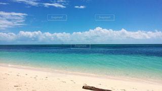 オーストラリアのビーチの写真・画像素材[3239715]