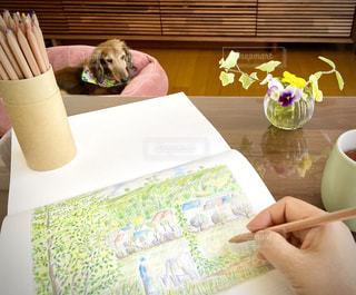 リビング,ペン,色鉛筆,紙,おえかき,ゆとり,大人の塗り絵,おうち時間,癒しの時