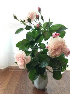 女性,風景,花,屋内,花束,花瓶,バラ,花びら,美しい,草木,眺め,こもれび