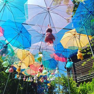 夏,群衆,雨,傘,屋外,緑,階段,かわいい,カラフル,きれい,青空,青,水,景色,光,観光,楽しい,樹木,屋根,いっぱい,キラキラ,旅行,昼,たくさん,雫,手作り,明るい,梅雨,カラー,てるてる坊主,ぬくもり,トラベル,ビニール傘,雨の日,自然光,願い,飾り,インスタ映え,傘の日,配置,カラフル傘