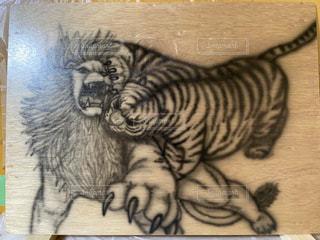 猫,動物,屋内,アート,ペン,ライオン,紙,おえかき,漫画,タイガー,スケッチ,おうち時間